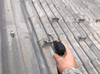 津川市、屋根バイオ洗浄