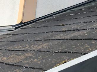 多治見市で屋根外壁塗装 屋根の汚れ カビの発生