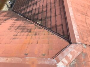 中津川市瀬戸、屋根の汚れ