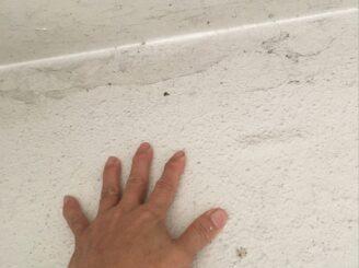 瑞浪市で外壁のバイオ洗浄
