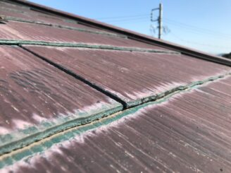 多見市で屋根外壁塗装 現調時 下見 家の状態  屋根の状態 塗り替え前 カビ コケ かび 苔 亀裂 ひび割れ 色褪せ 色落ち 色おち