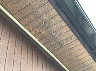 多治見市で平屋の外壁塗り替え塗装 ラジカルシリコンGH 軒天汚れ カビ苔の発生 塗り替え前